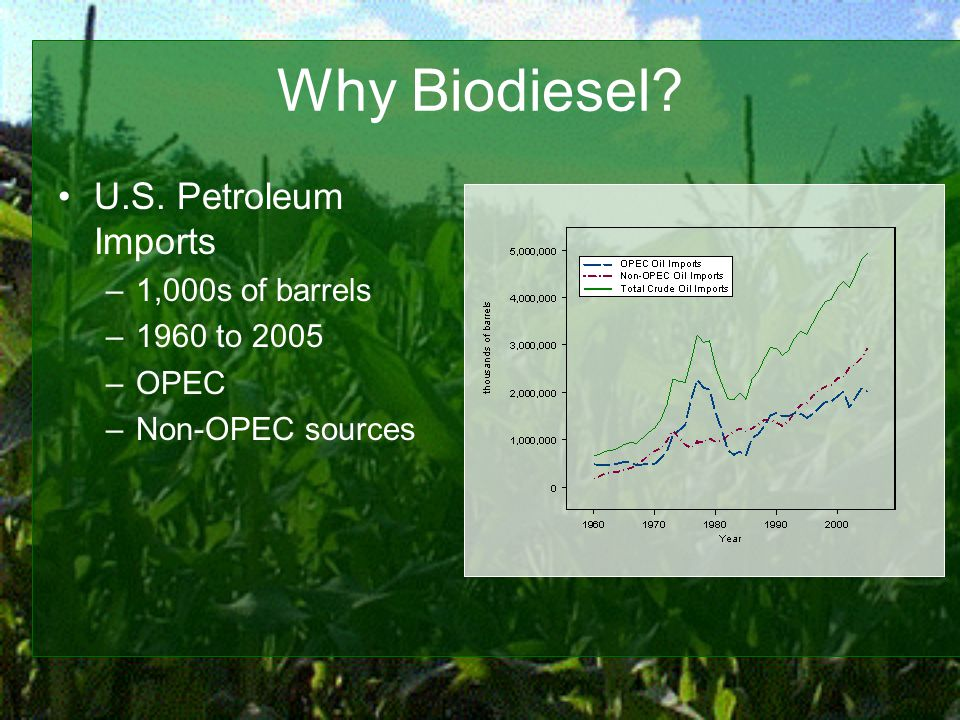 Why Biodiesel U.S. Petroleum Imports –1,000s of barrels –1960 to 2005 –OPEC –Non-OPEC sources