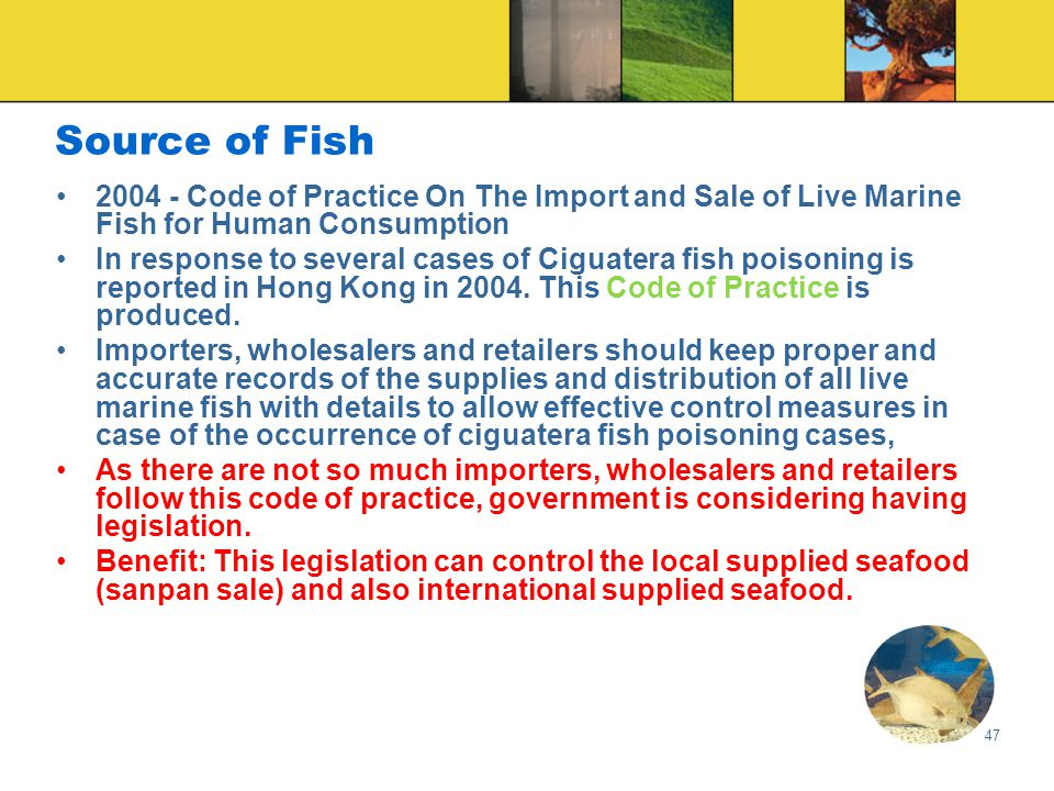 47 Source of Fish 2004 - Code of Practice On The Import and Sale of Live Marine Fish for Human Consumption In response to several cases of Ciguatera fish poisoning is reported in Hong Kong in 2004.