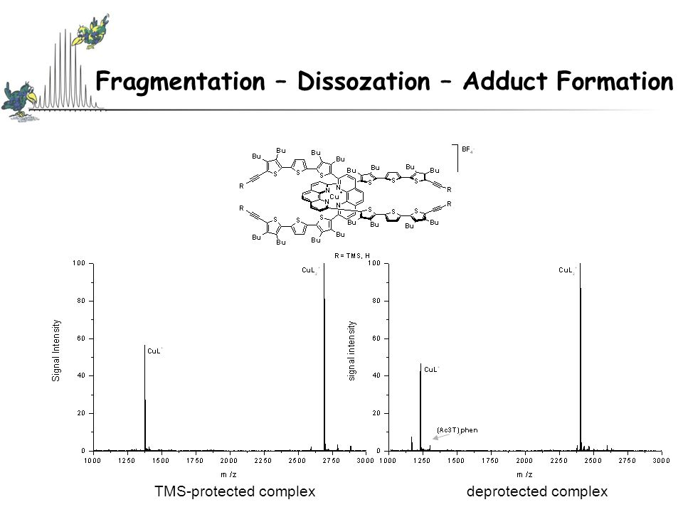 Fragmentation – Dissozation – Adduct Formation TMS-protected complexdeprotected complex