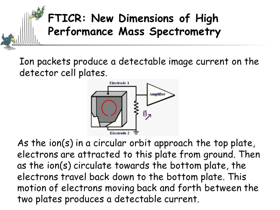 FTICR: New Dimensions of High Performance Mass Spectrometry Ion packets produce a detectable image current on the detector cell plates.