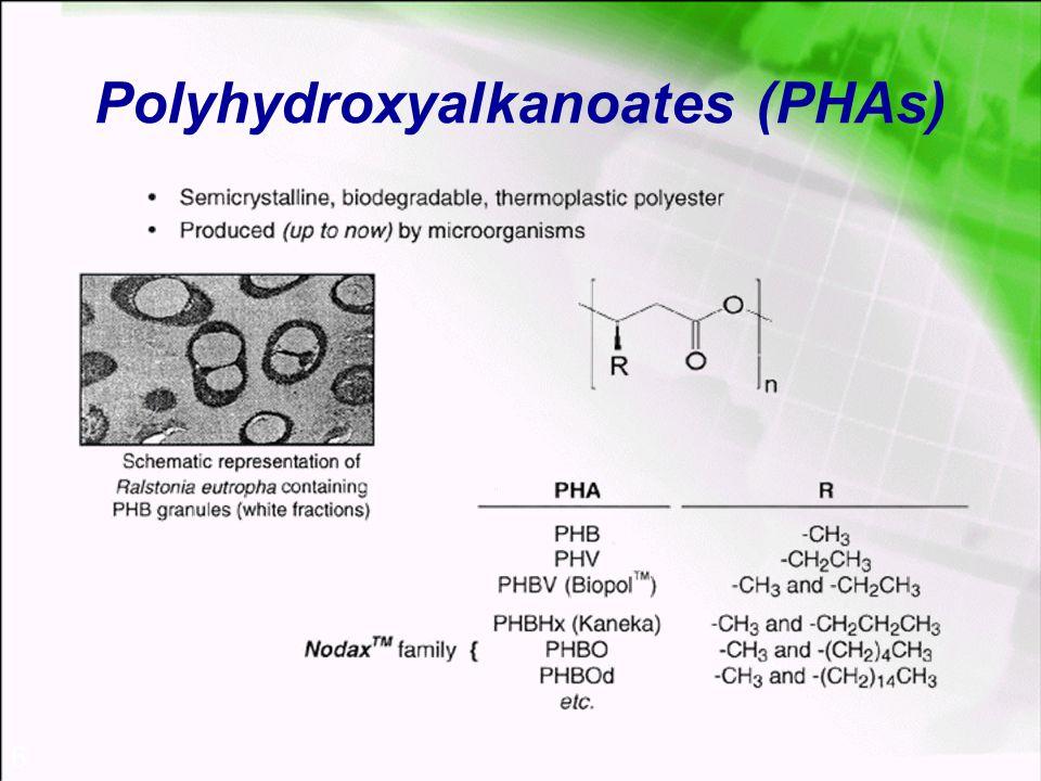 6 Polyhydroxyalkanoates (PHAs)