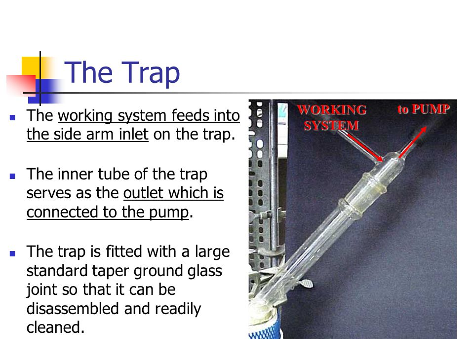 The Trap The working system feeds into the side arm inlet on the trap.
