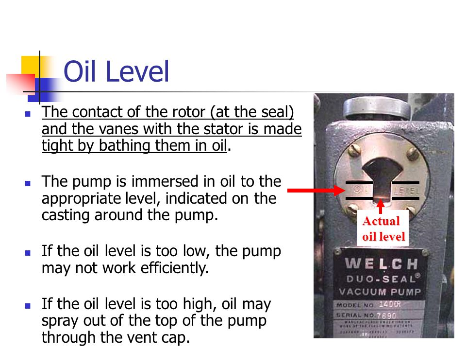 Oil Level The contact of the rotor (at the seal) and the vanes with the stator is made tight by bathing them in oil.