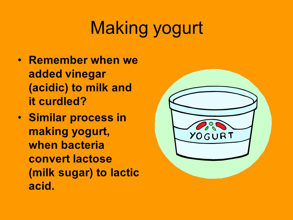 Making yogurt Remember when we added vinegar (acidic) to milk and it curdled? Similar process in making yogurt, when bacteria convert lactose (milk su