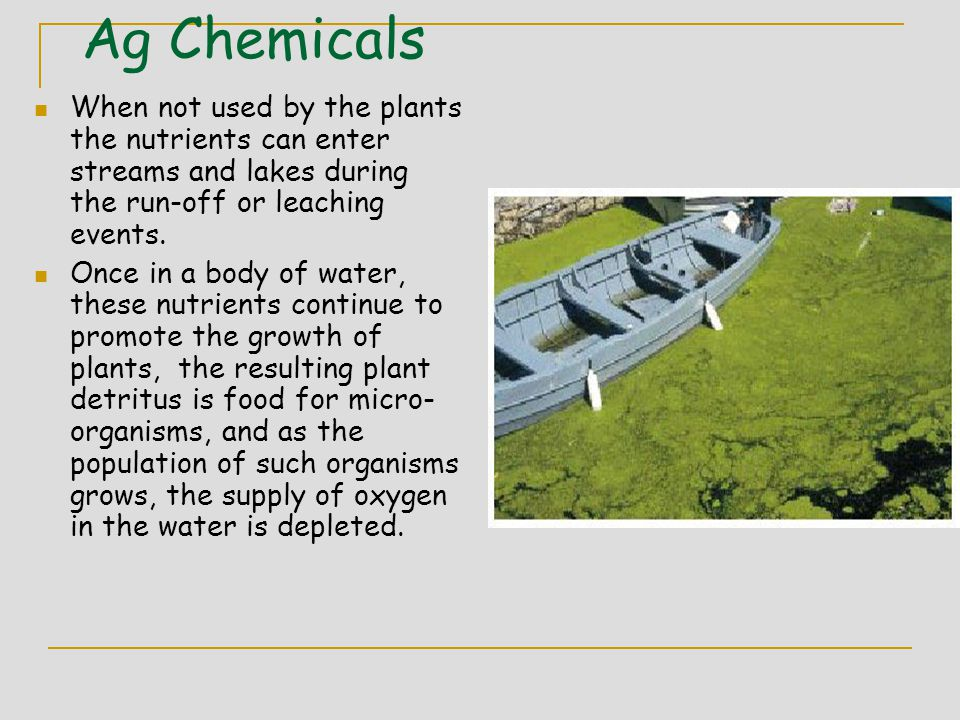Ag Chemicals When not used by the plants the nutrients can enter streams and lakes during the run-off or leaching events.