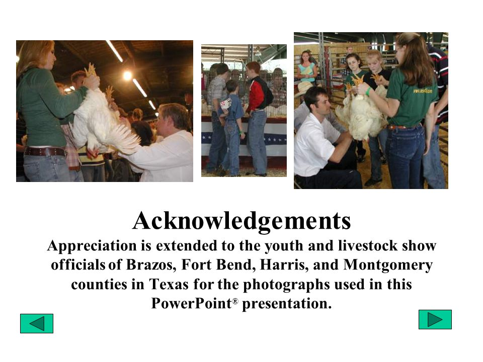 Acknowledgements Appreciation is extended to the youth and livestock show officials of Brazos, Fort Bend, Harris, and Montgomery counties in Texas for