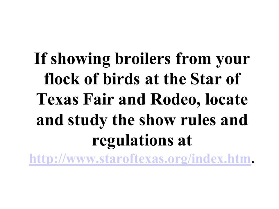 If showing broilers from your flock of birds at the Star of Texas Fair and Rodeo, locate and study the show rules and regulations at http://www.staroftexas.org/index.htm.