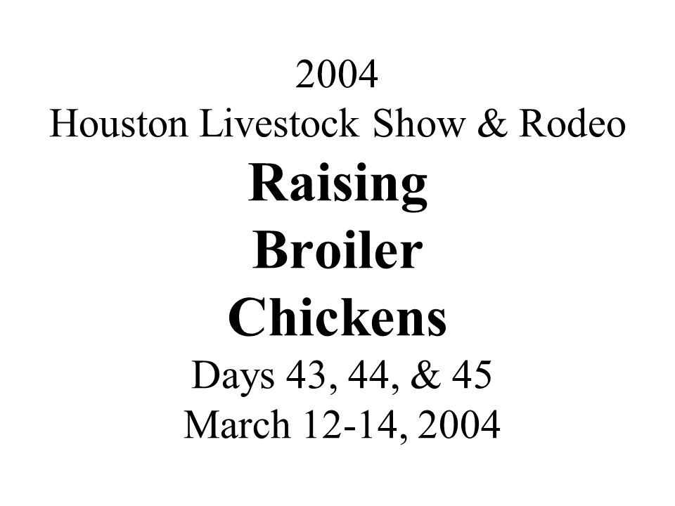 2004 Houston Livestock Show & Rodeo Raising Broiler Chickens Days 43, 44, & 45 March 12-14, 2004