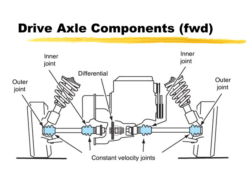 Drive Axle Components (fwd)