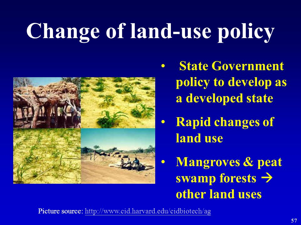 57 Change of land-use policy State Government policy to develop as a developed state Rapid changes of land use Mangroves & peat swamp forests  other land uses Picture source: http://www.cid.harvard.edu/cidbiotech/aghttp://www.cid.harvard.edu/cidbiotech/ag