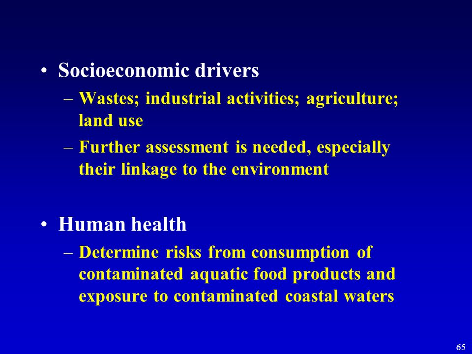 65 Socioeconomic drivers –Wastes; industrial activities; agriculture; land use –Further assessment is needed, especially their linkage to the environment Human health –Determine risks from consumption of contaminated aquatic food products and exposure to contaminated coastal waters