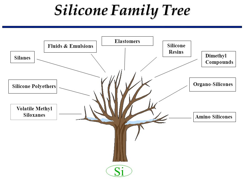 Silicone Family Tree Si Volatile Methyl Siloxanes Silicone Polyethers Silanes Fluids & Emulsions Silicone Resins Dimethyl Compounds Organo-Silicones A