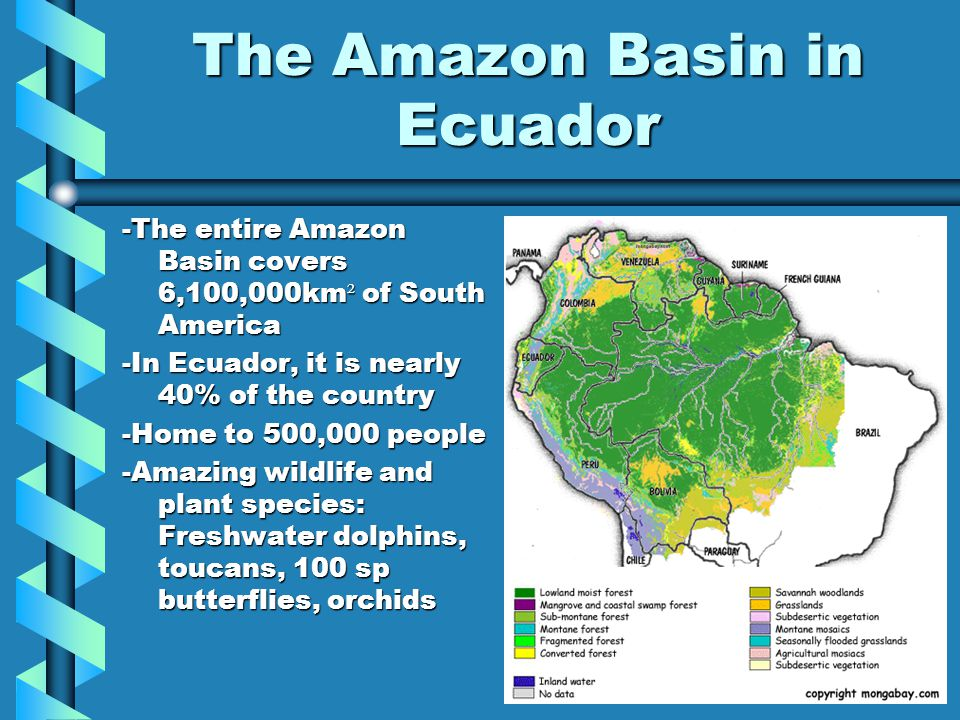 The Amazon Basin in Ecuador -The entire Amazon Basin covers 6,100,000km ² of South America -In Ecuador, it is nearly 40% of the country -Home to 500,0