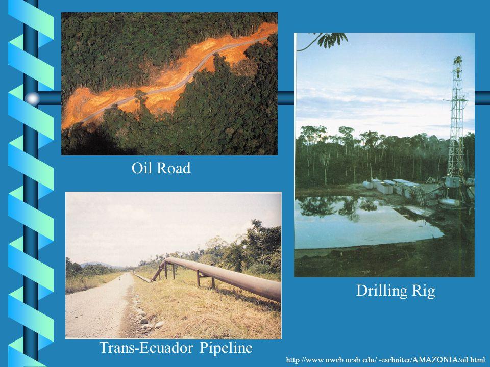 http://www.uweb.ucsb.edu/~eschniter/AMAZONIA/oil.html Oil Road Trans-Ecuador Pipeline Drilling Rig