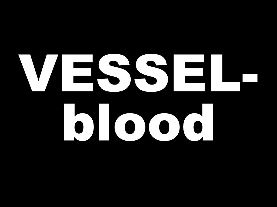 VESSEL- blood