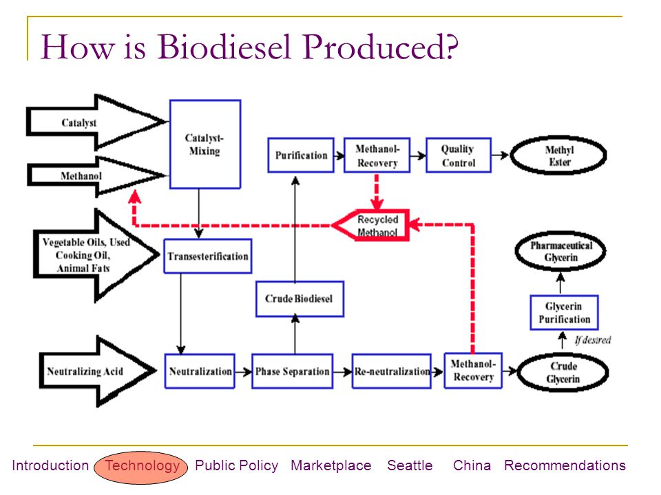 Introduction Technology Public Policy Marketplace Seattle China Recommendations How is Biodiesel Produced?