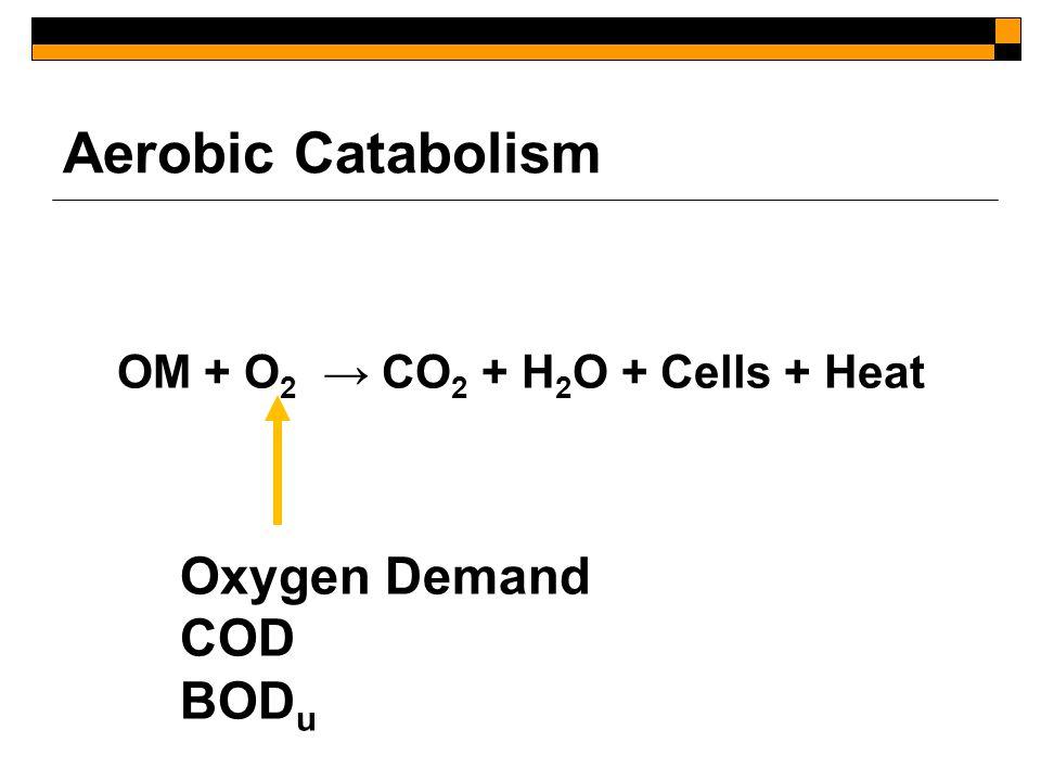 Aerobic Catabolism OM + O 2 → CO 2 + H 2 O + Cells + Heat Oxygen Demand COD BOD u
