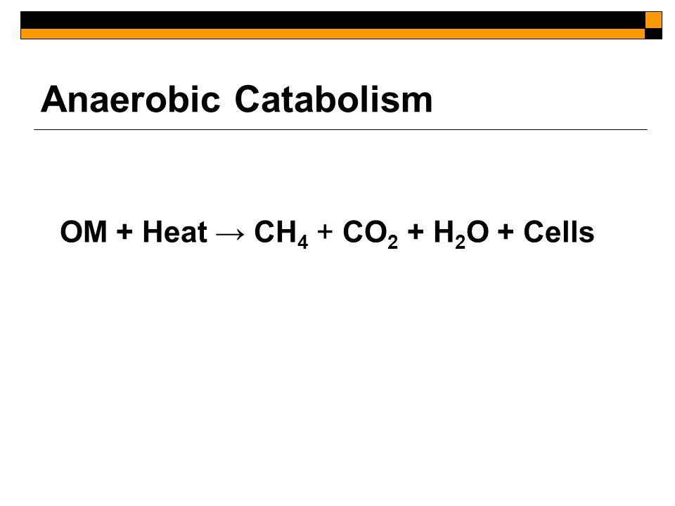 Anaerobic Catabolism OM + Heat → CH 4 + CO 2 + H 2 O + Cells