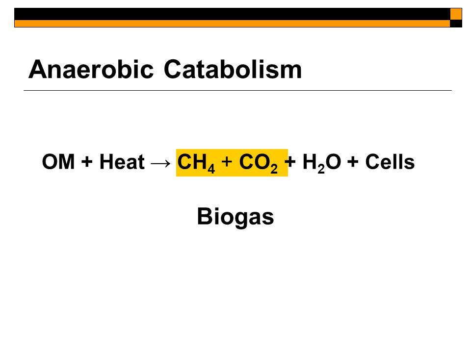 Anaerobic Catabolism OM + Heat → CH 4 + CO 2 + H 2 O + Cells Biogas