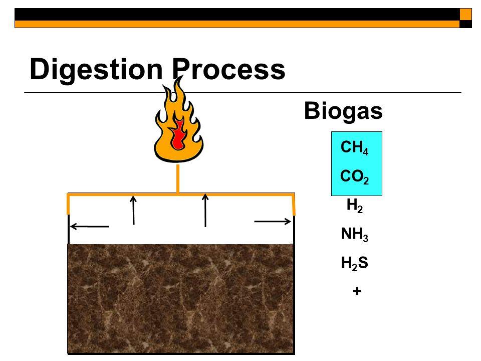 Aerobic Catabolism OM + O 2 → CO 2 + H 2 O + Cells + Heat