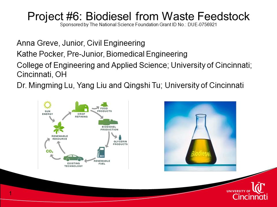 Project #6: Biodiesel from Waste Feedstock Sponsored by The National Science Foundation Grant ID No.: DUE-0756921 Anna Greve, Junior, Civil Engineerin