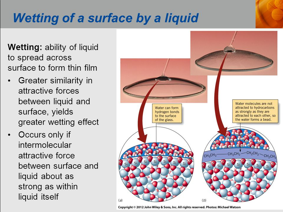 Wetting of a surface by a liquid Wetting: ability of liquid to spread across surface to form thin film Greater similarity in attractive forces between liquid and surface, yields greater wetting effect Occurs only if intermolecular attractive force between surface and liquid about as strong as within liquid itself