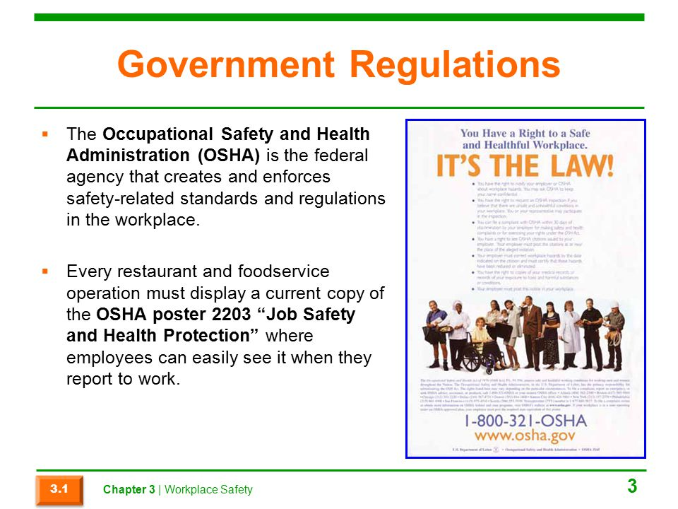 Government Regulations  The Occupational Safety and Health Administration (OSHA) is the federal agency that creates and enforces safety-related standards and regulations in the workplace.