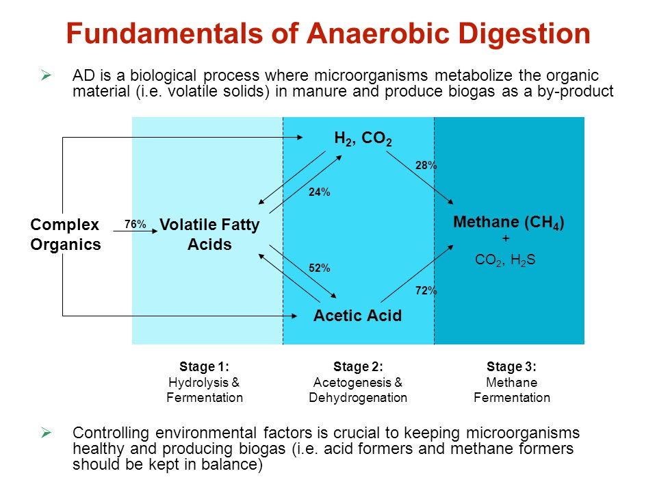 Fundamentals of Anaerobic Digestion  AD is a biological process where microorganisms metabolize the organic material (i.e. volatile solids) in manure
