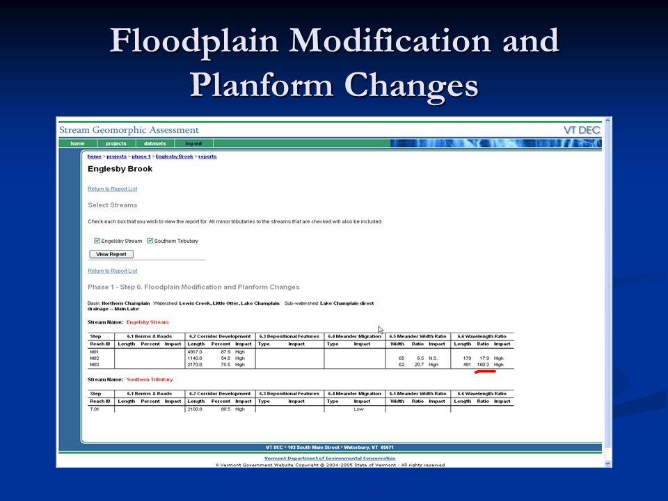 Floodplain Modification and Planform Changes