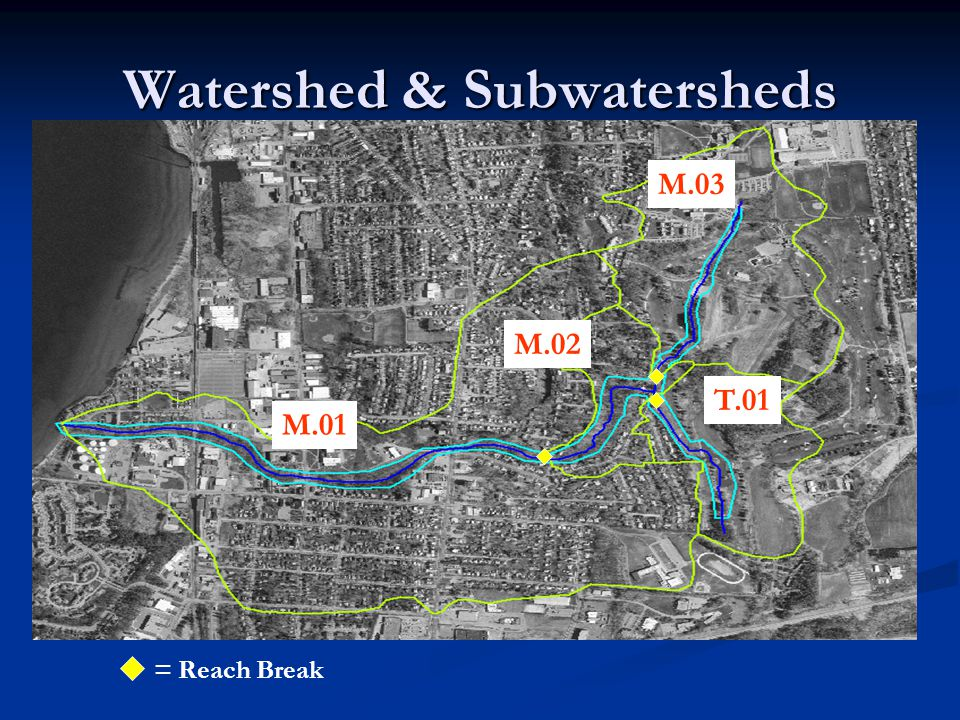 Watershed & Subwatersheds M.01 M.03 T.01 M.02 = Reach Break