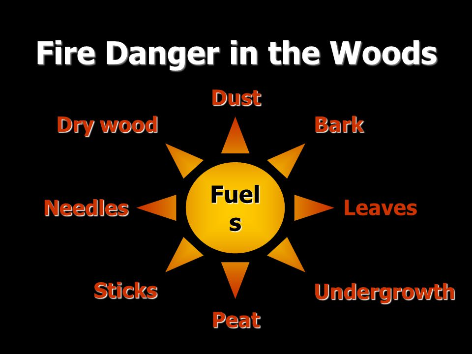 Fuel s Fire Danger in the Woods Dust Dry wood Bark Leaves Needles Peat Sticks Undergrowth