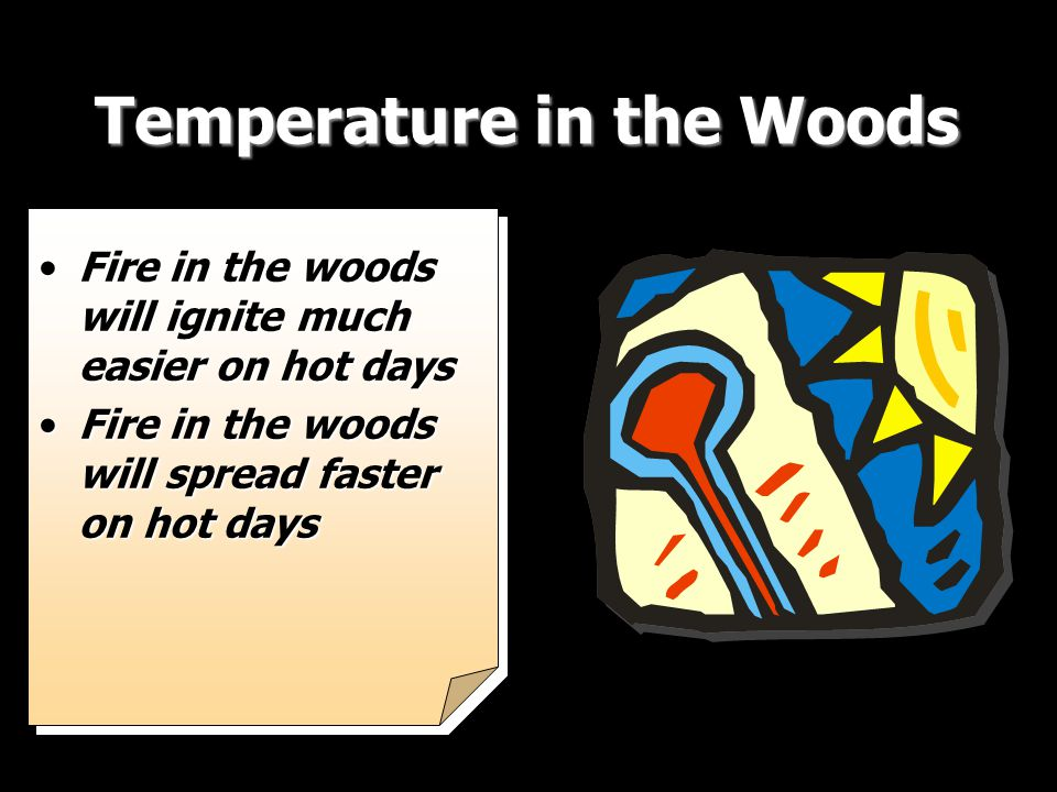 Temperature in the Woods Fire in the woods will ignite much easier on hot daysFire in the woods will ignite much easier on hot days Fire in the woods