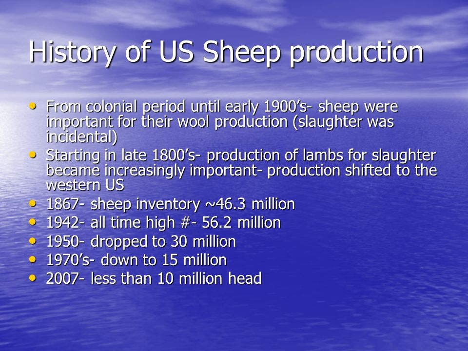 History of US Sheep production From colonial period until early 1900's- sheep were important for their wool production (slaughter was incidental) From