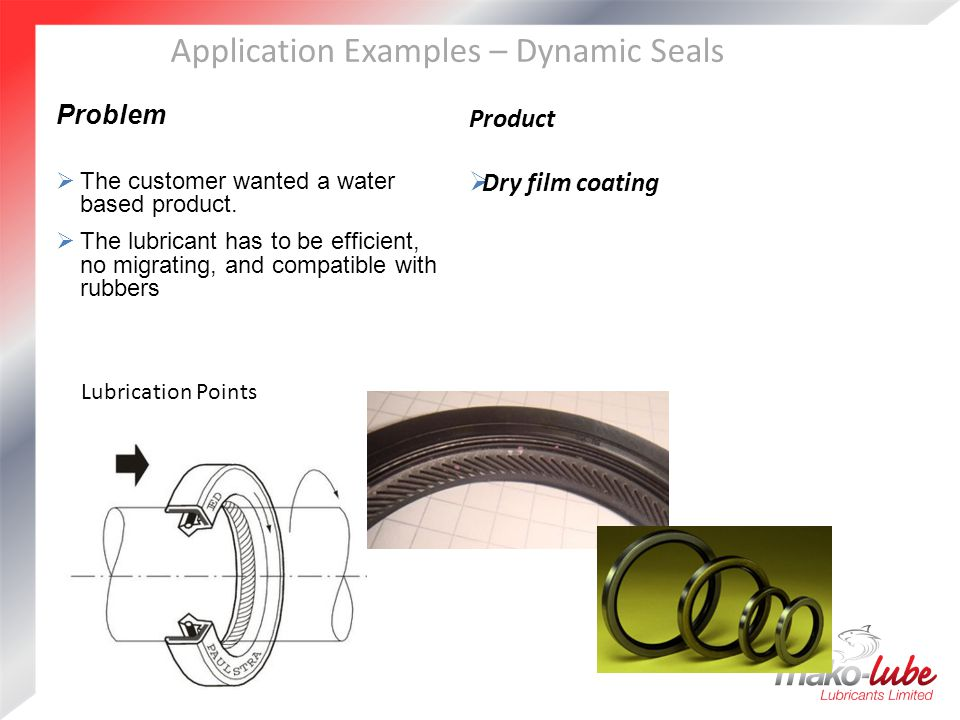 Application Examples – Dynamic Seals Problem  The customer wanted a water based product.