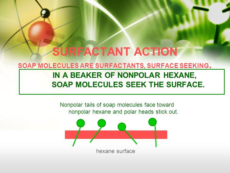 SURFACTANT ACTION SOAP MOLECULES ARE SURFACTANTS, SURFACE SEEKING.