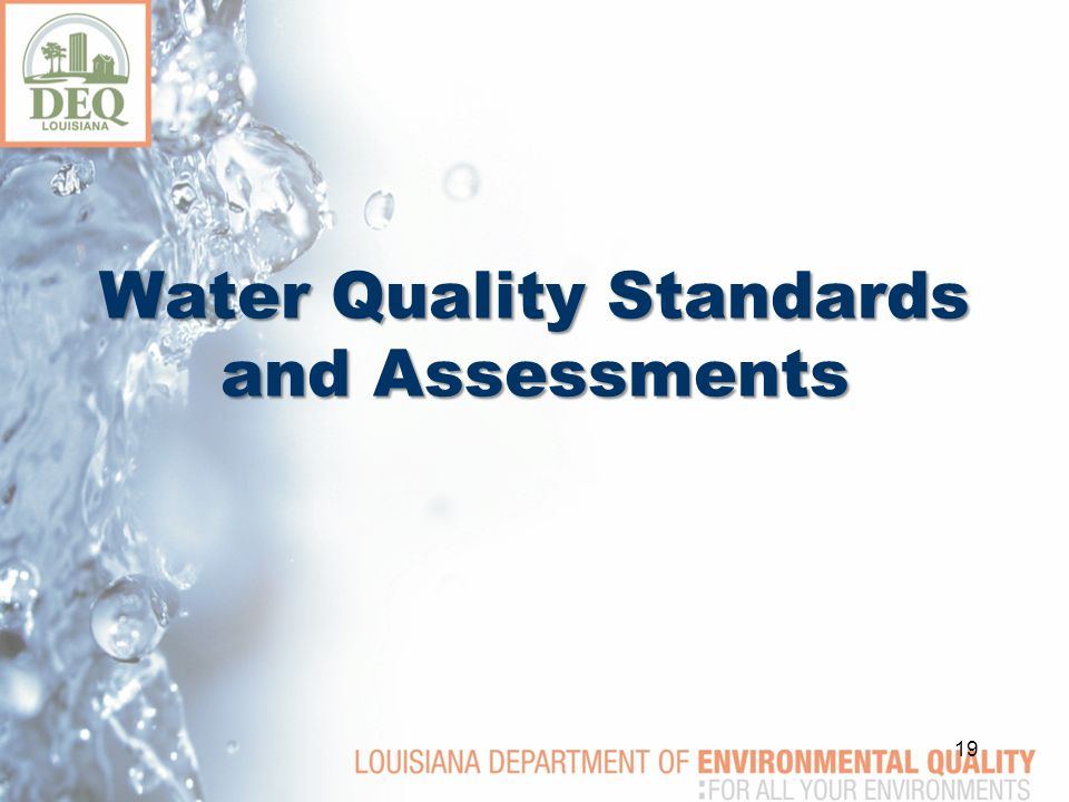 Water Quality Standards and Assessments 19