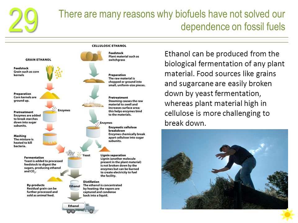 There are many reasons why biofuels have not solved our dependence on fossil fuels29 Ethanol can be produced from the biological fermentation of any plant material.