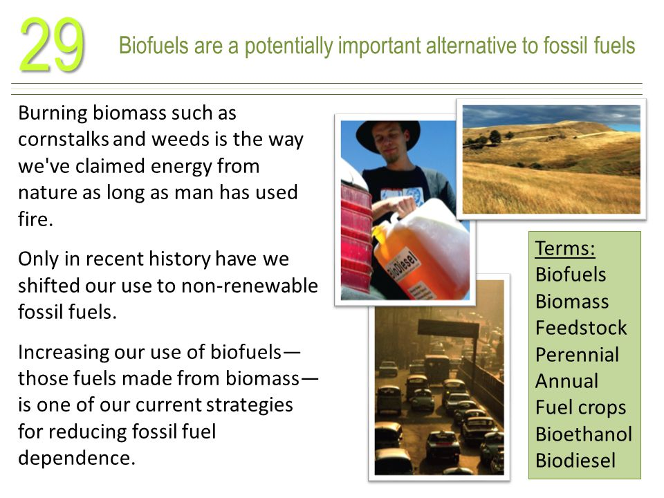 Biofuels are a potentially important alternative to fossil fuels29 Burning biomass such as cornstalks and weeds is the way we ve claimed energy from nature as long as man has used fire.