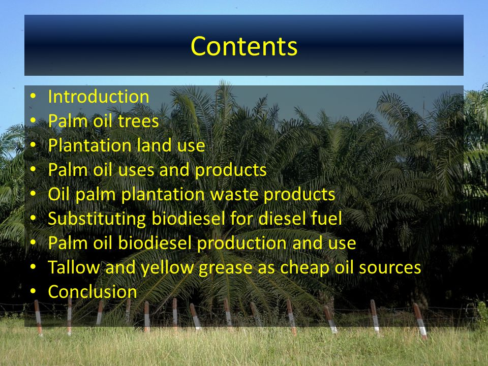 Contents Introduction Palm oil trees Plantation land use Palm oil uses and products Oil palm plantation waste products Substituting biodiesel for dies