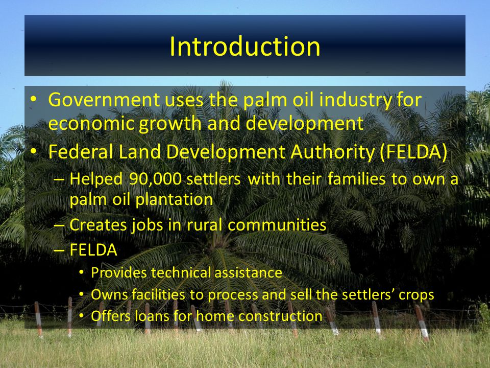 Introduction Government uses the palm oil industry for economic growth and development Federal Land Development Authority (FELDA) – Helped 90,000 sett