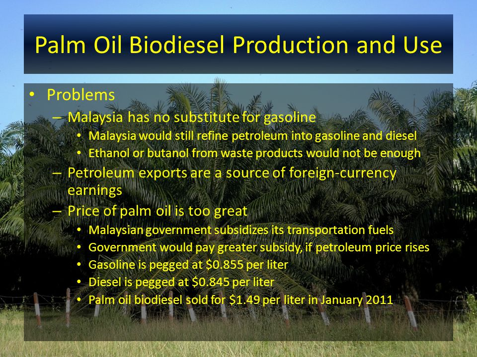 Palm Oil Biodiesel Production and Use Problems – Malaysia has no substitute for gasoline Malaysia would still refine petroleum into gasoline and diese