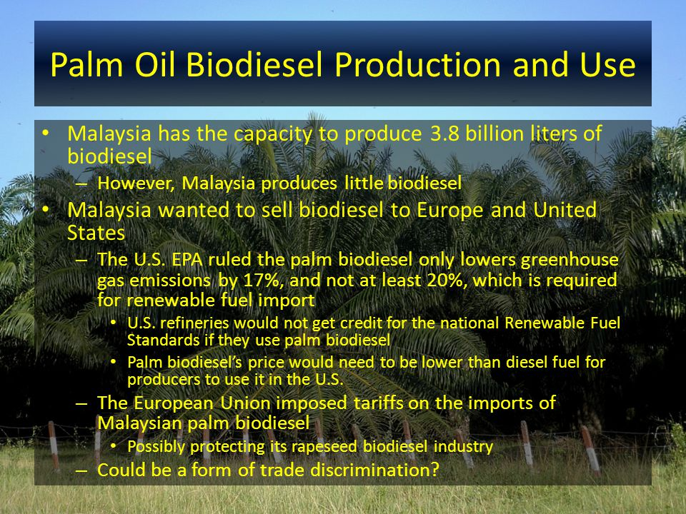 Palm Oil Biodiesel Production and Use Malaysia has the capacity to produce 3.8 billion liters of biodiesel – However, Malaysia produces little biodies