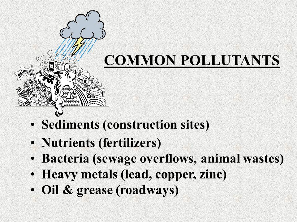 Sediments (construction sites) Nutrients (fertilizers) Bacteria (sewage overflows, animal wastes) Heavy metals (lead, copper, zinc) Oil & grease (roadways) COMMON POLLUTANTS