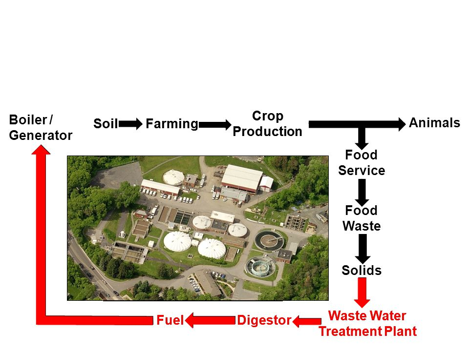 Farming Crop Production Food Service Food Waste Solids Waste Water Treatment Plant Animals Boiler / Generator Fuel Biodiesel Production Compost Digestor Soil (Canola) (Grease) Farming Crop Production Animals Soil (Canola) Food Service Food Waste Biodiesel Production Fuel Solids Compost Waste Water Treatment Plant Digestor Fuel