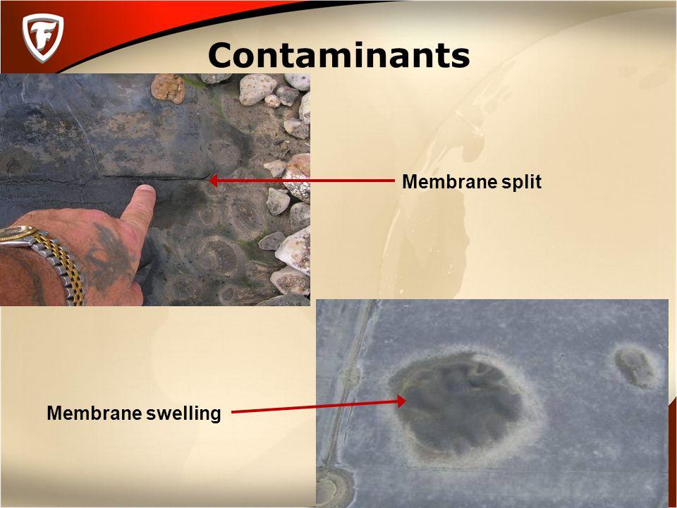 Contaminants Membrane split Membrane swelling