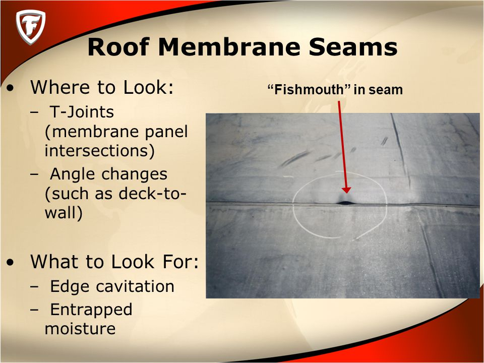 Roof Membrane Seams Where to Look: – T-Joints (membrane panel intersections) – Angle changes (such as deck-to- wall) What to Look For: – Edge cavitation – Entrapped moisture Fishmouth in seam