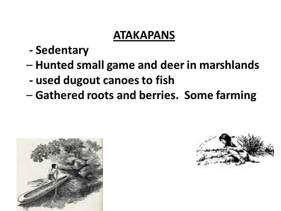ATAKAPANS - Sedentary – Hunted small game and deer in marshlands - used dugout canoes to fish – Gathered roots and berries. Some farming
