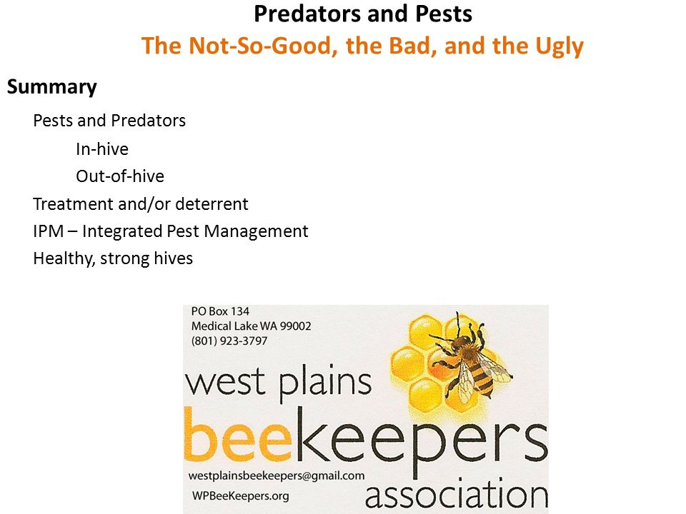 Predators and Pests The Not-So-Good, the Bad, and the Ugly Summary Pests and Predators In-hive Out-of-hive Treatment and/or deterrent IPM – Integrated Pest Management Healthy, strong hives