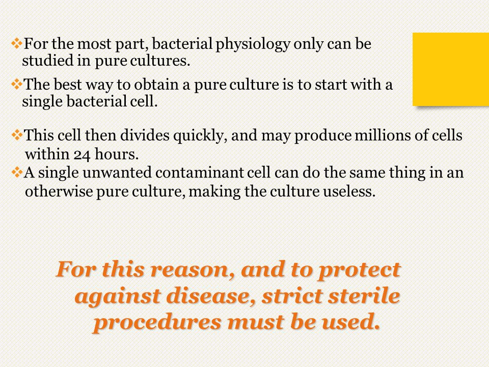  For the most part, bacterial physiology only can be studied in pure cultures.  The best way to obtain a pure culture is to start with a single bact