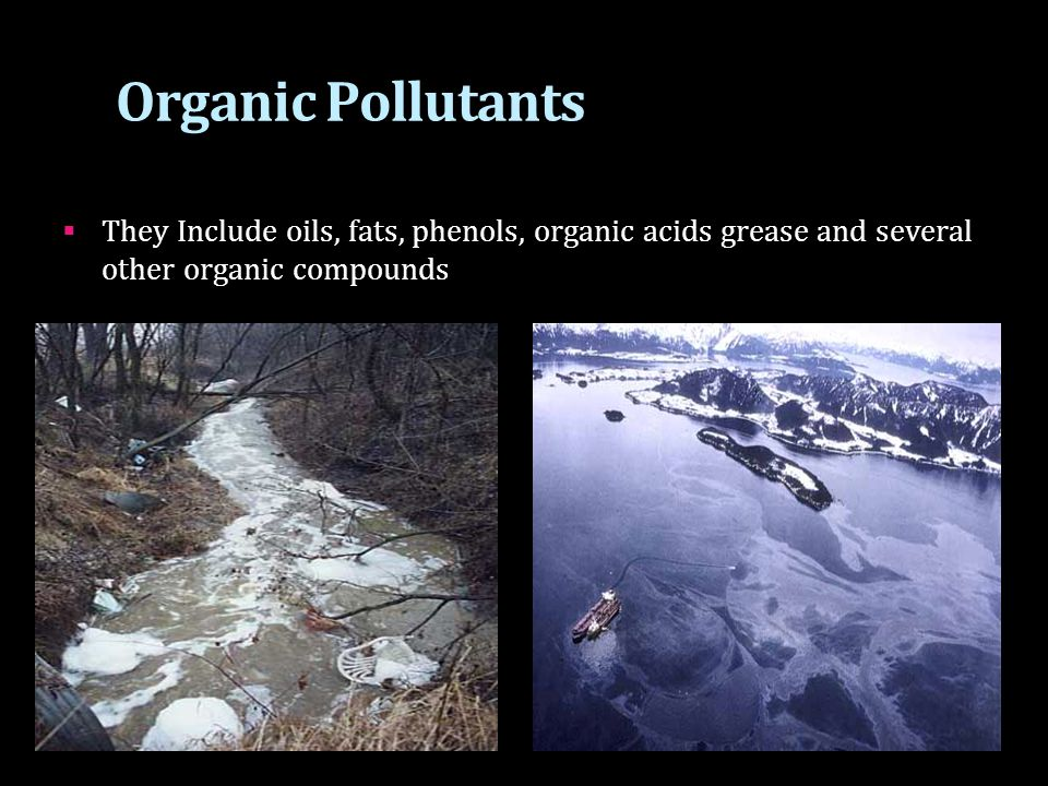 Organic Pollutants  They Include oils, fats, phenols, organic acids grease and several other organic compounds